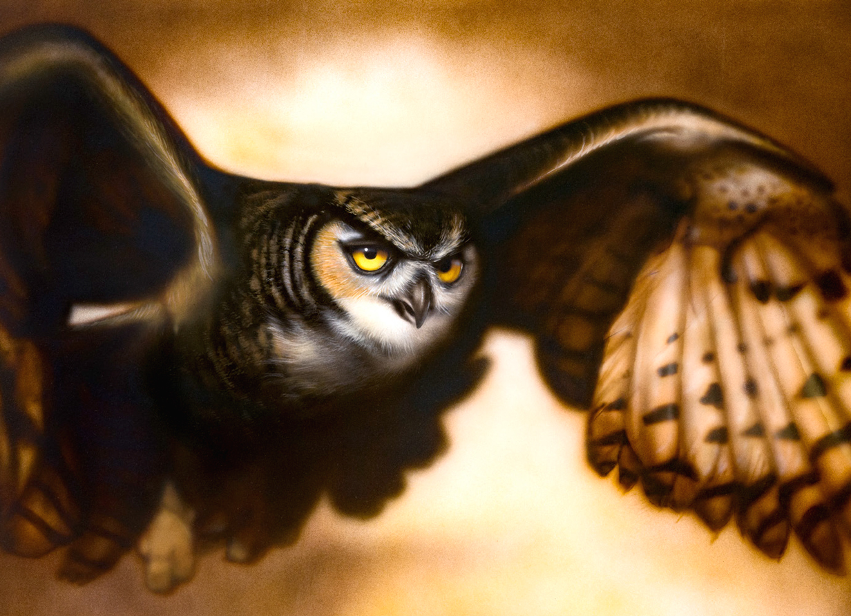 flying owl airbrush painting