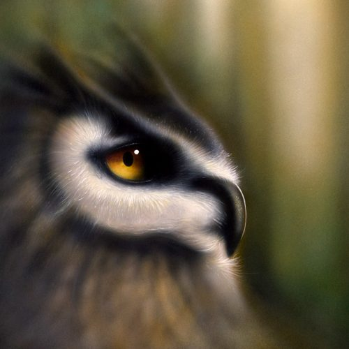airbrush patinting of owl in the woods