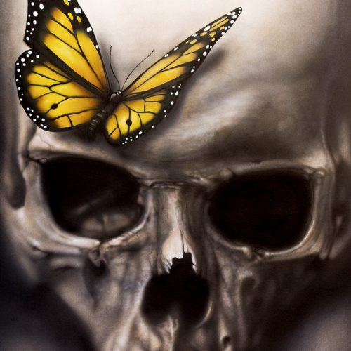 skull with butterfly airbrush painting